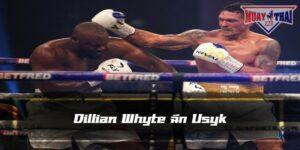 Dillian Whyte ฉีก Usyk